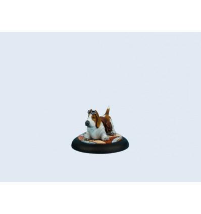 [Wolsun] Wolsung dog